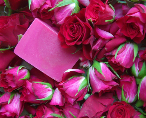 Rosenseife im Rosenbett, Foto: Gabi Sußdorf